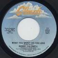 Bobby Caldwell / What You Won't Do For Love