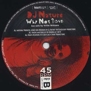DJ Nature / Let The Children Play c/w Why Not label