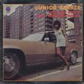Junior Parker / Love Ain't Nothin' But A Business Goin' On