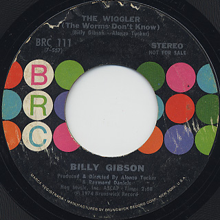 Billy Gibson / The Wiggler (The Worms Don't Know)