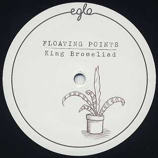 Floating Points / King Bromeliad label