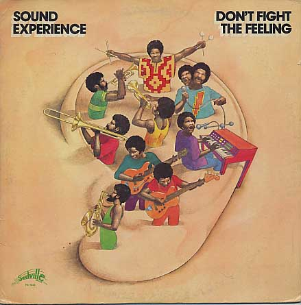 Sound Experience / Don't Fight The Feeling front