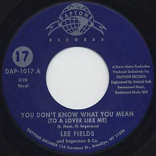 Lee Fields / You Don't Know What You Mean