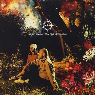 Nightmares on Wax / Mind Elevation front