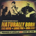 Big Noyd, Large Pro, Kool G. Rap / Naturally Born
