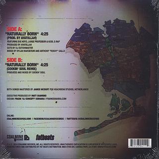 Big Noyd, Large Pro, Kool G. Rap / Naturally Born back