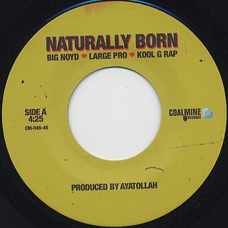 Big Noyd, Large Pro, Kool G. Rap / Naturally Born label