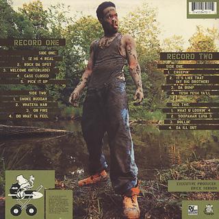 Redman / Muddy Waters back