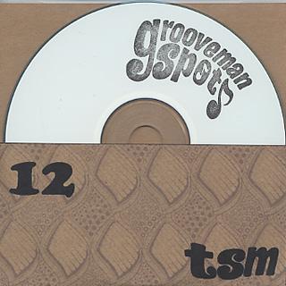 grooveman Spot / tsm 12