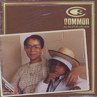 Common / One Day It'll All Make Sense
