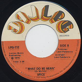 Spice / Everything Is You (45) back