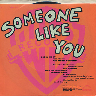 Sylvester / Someone Like You (7w/Jacket) back