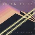 Brian Ellis / In The Dark