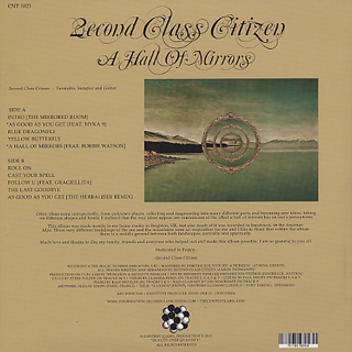 2econd Class Citizen / A Hall Of Mirrors back