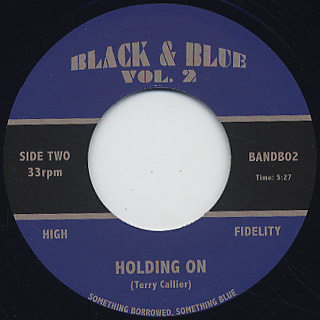 Terry Callier / Holding On