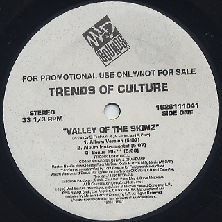 Trends Of Culture / Valley Of The Skinz back