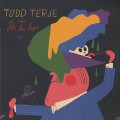 Todd Terje / It's The Arps EP