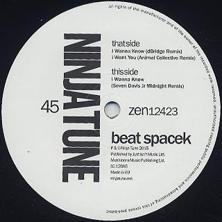 Beat Spacek / I Wanna Know Remix EP back