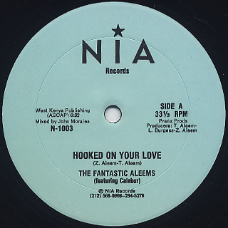 Fantastic Aleems / Hooked On Your Love