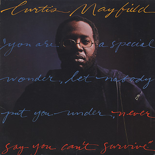 Curtis Mayfield / Never Say You Can't Survive