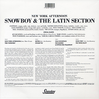 Snowboy / New York Afternoon back