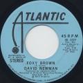 David Newman / Foxy Brown