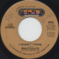 Whatnauts / I Wasn't There c/w Give Him Up