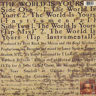 Nas / The World Is Yours back