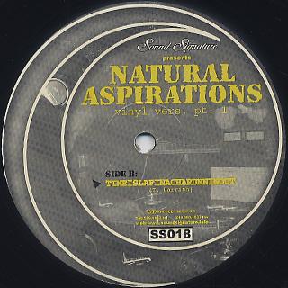 Theo Parrish / Natural Aspirations back