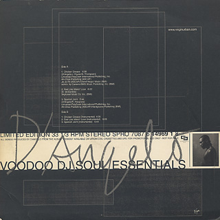 D'Angelo / Voodoo DJ Soul Essentials back