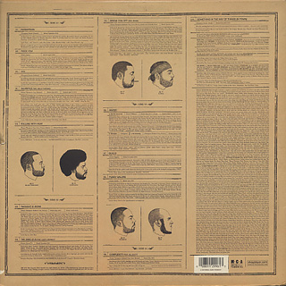Roots Phrenology Lp Mca 中古レコード通販 大阪 Root Down