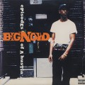 Big Noyd / Episodes Of A Hustla
