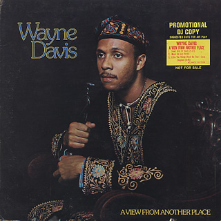 Wayne Davis / A View From Another Place