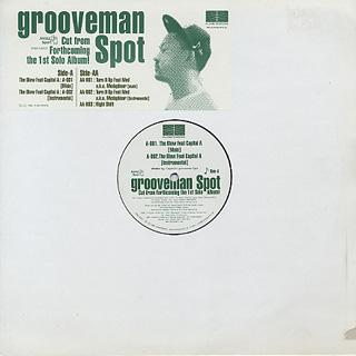 Grooveman Spot / Eternal Development EP1