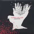 Terry Callier / Running Around