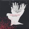 Terry Callier / Running Around