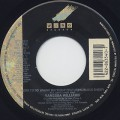 Vanessa Williams / Work To Do (45)