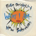 Edie Brickell & New Bohemians / What I Am