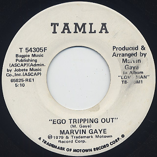 Marvun Gaye / Ego Tripping Out back