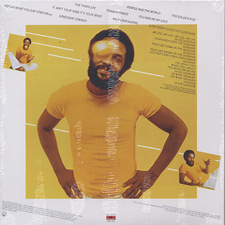 Roy Ayers Ubiquity / Everybody Loves The Sunshine (Yellow) back