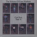 Voices Of East Harlem / Can You Feel It-1