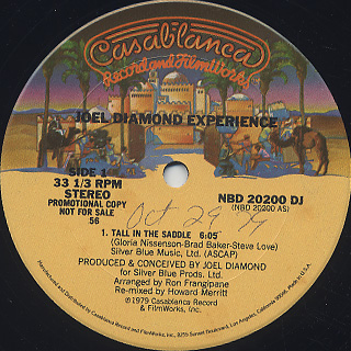Joel Diamond Experience / Tall In The Saddle back