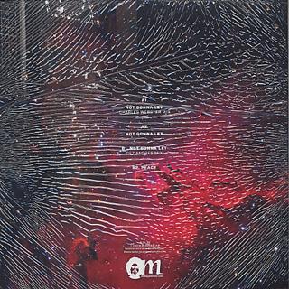 Randolph / Not Gonna Let Remixes back