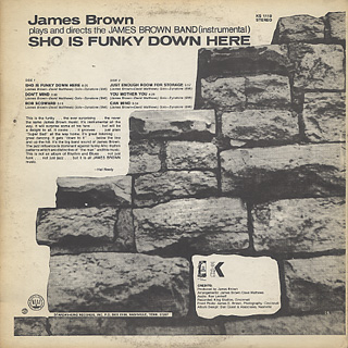 James Brown / Sho Is Funky Down Here back