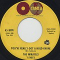 Miracles / You've Really Got A Hold On Me