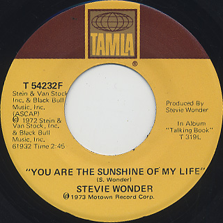 Stevie Wonder / You Are The Sunshine Of My Life