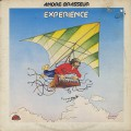 Andre Brasseur / Experience