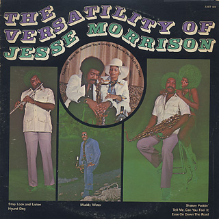 Jesse Morrison / The Versatility Of front