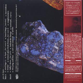 Julien Dyne / Pins & Digits (LP) back