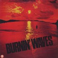 Toshiyuki Honda / Burnin' Waves